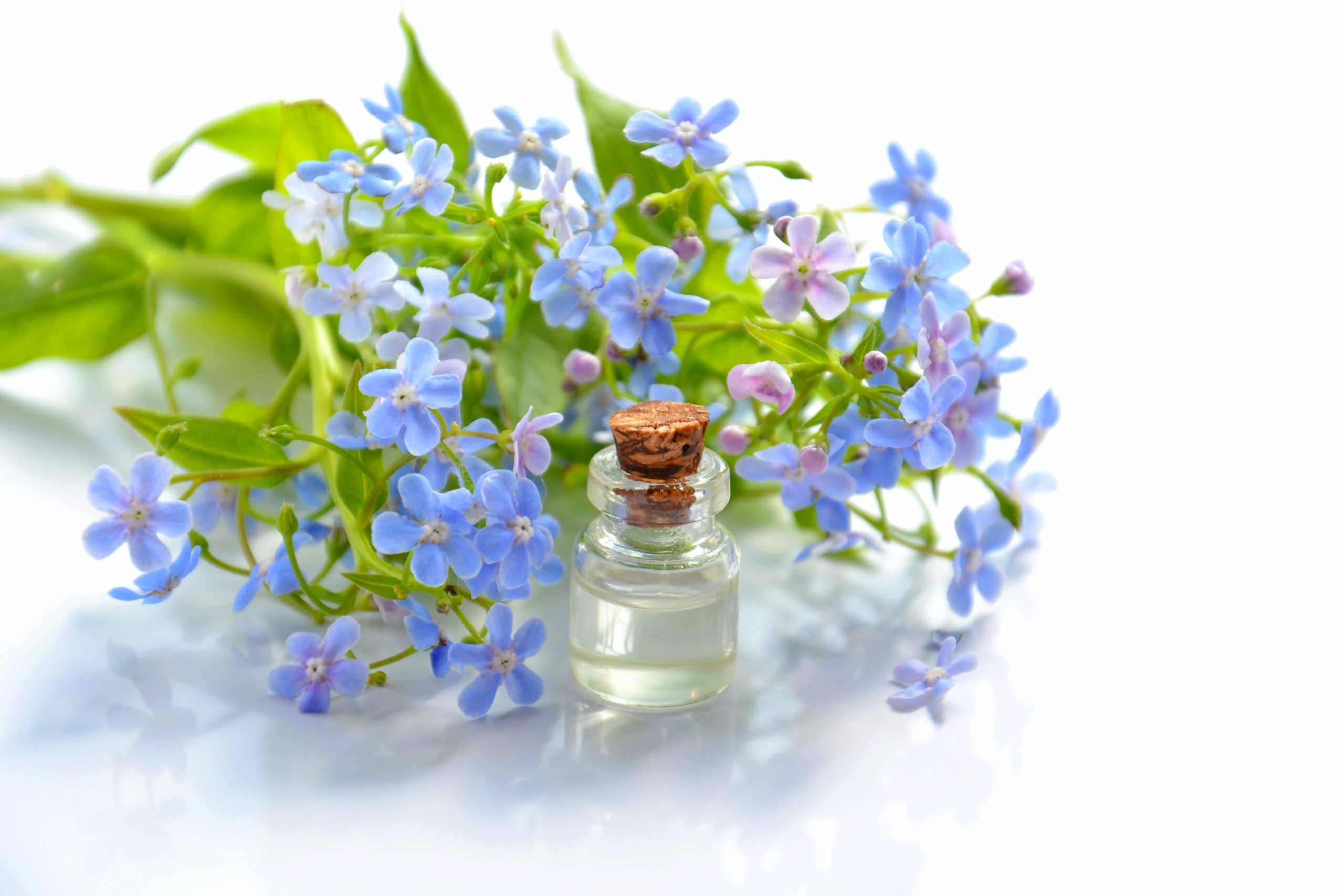 Ten Essential Oils with Medicinal Benefits